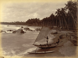 Ceylon. View on the beach
